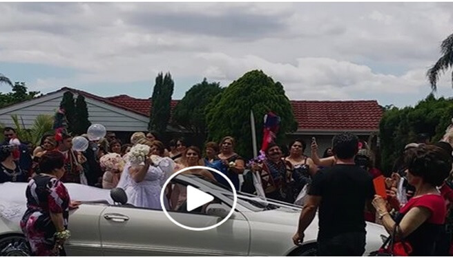 Amore Limousines ~ Assyrian Wedding